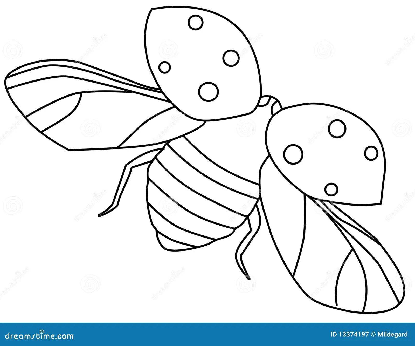 Flying Ladybug Contour Stock Illustration Illustration Of
