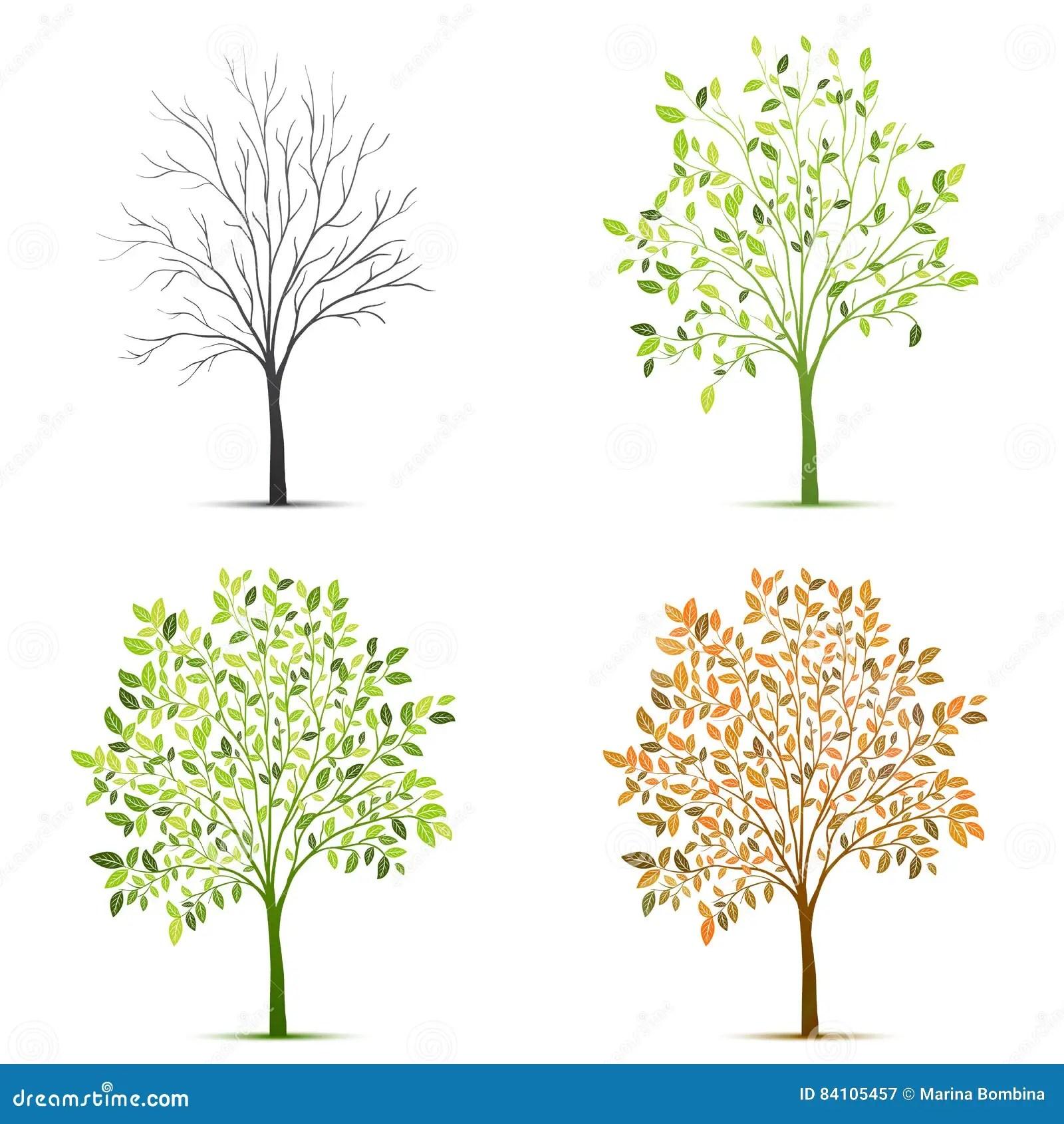 Four Seasons Of Tree Vector Stock Vector