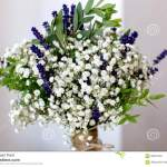 Fragrant Bouquet Of Baby S Breath With Eucalyptus And Lavender Stock Image Image Of Bowl Bucket 58391043