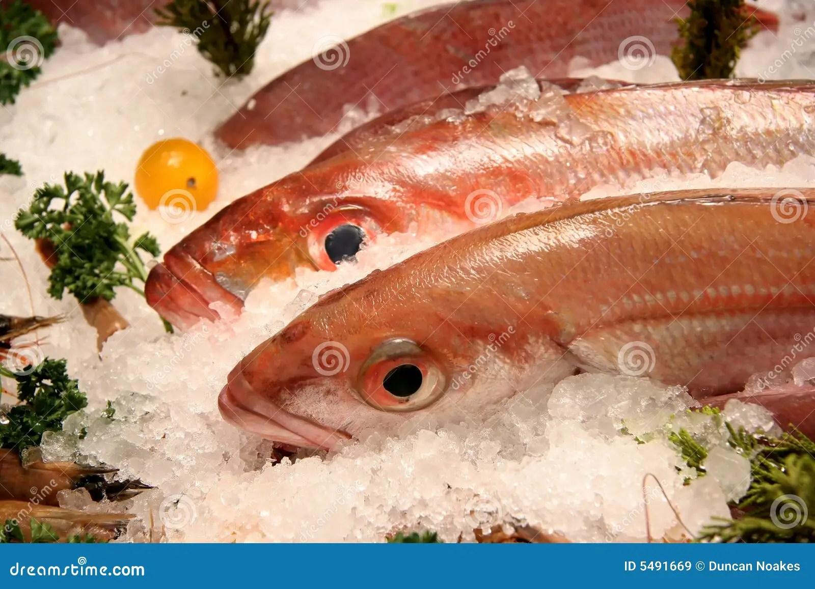Boston Seafood Fresh Market