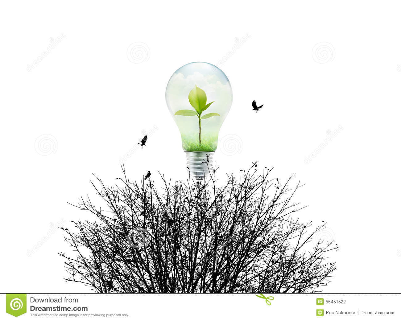 Fresh Nature In Light Bulb And Dry Environment On White