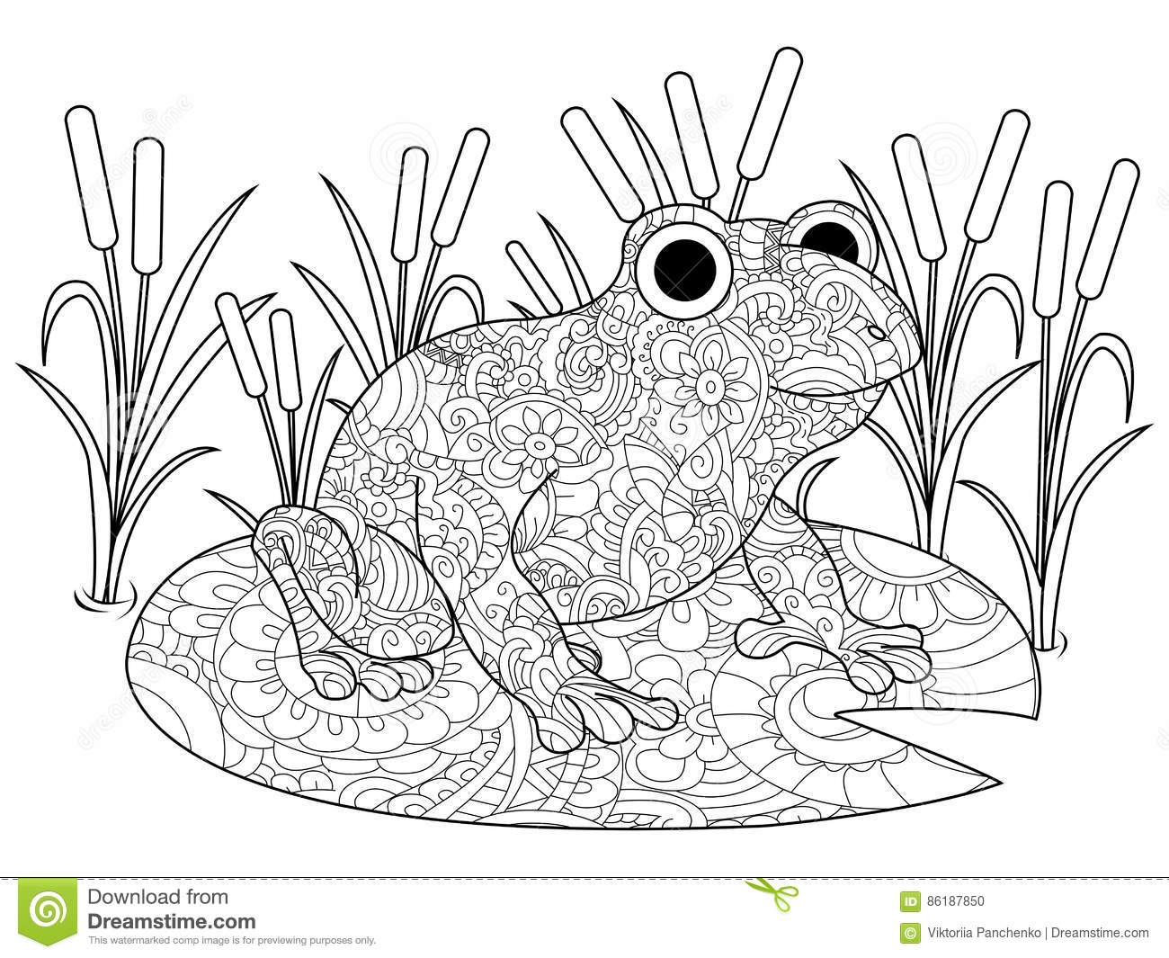 Frog On A Lily In The Swamp Coloring Book For Adults