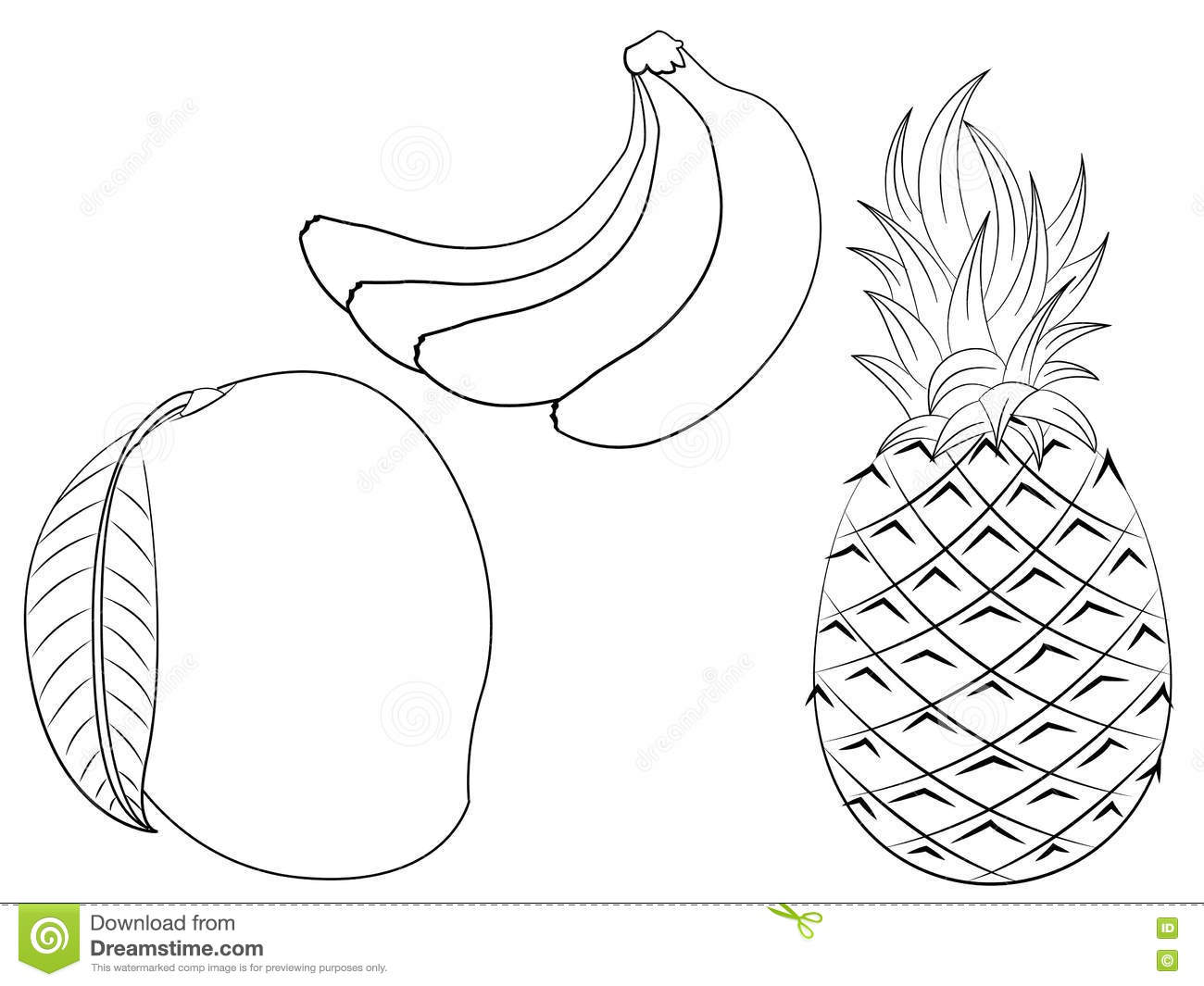 Fruits Coloring Page Stock Image Illustration Of