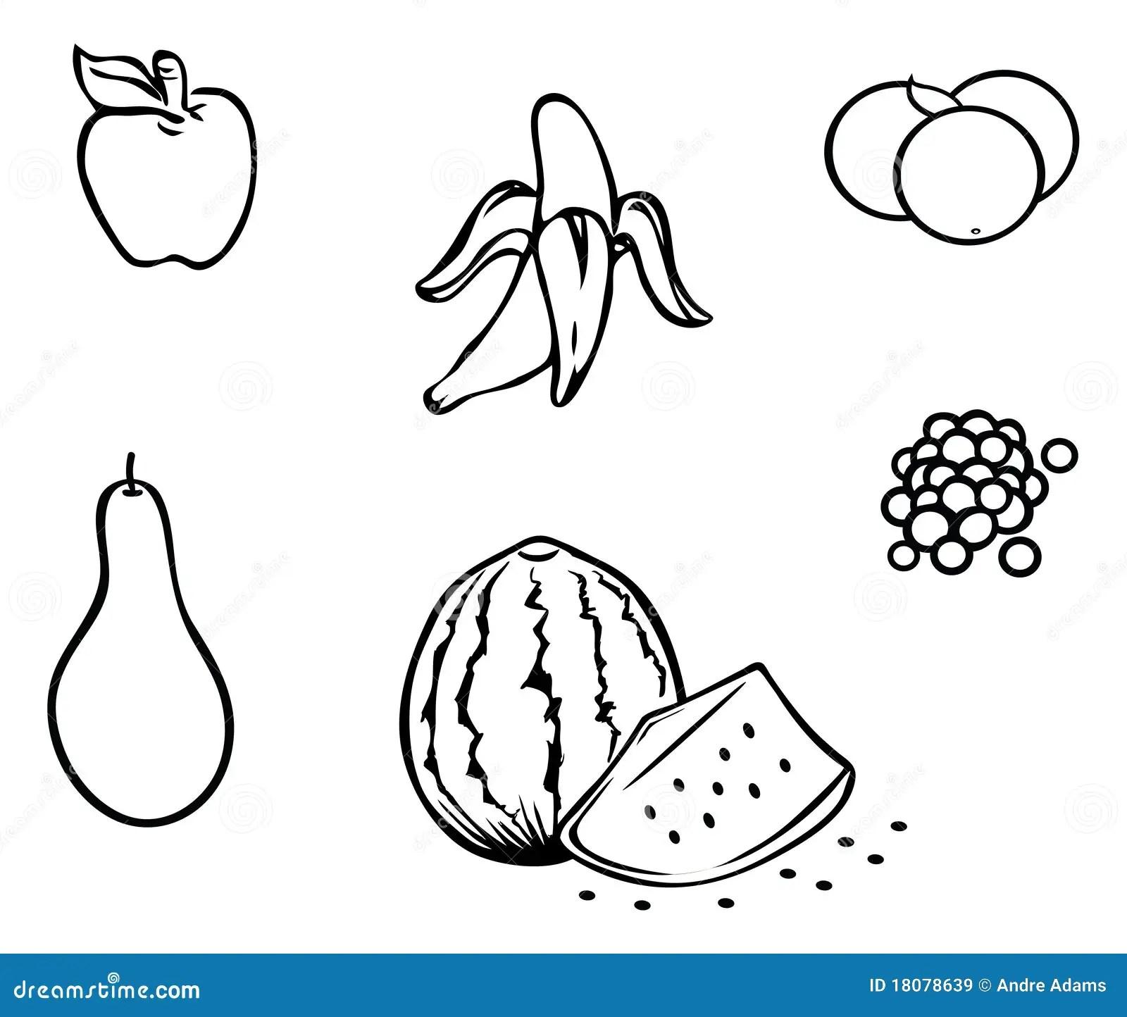 Fruits Outline Stock Vector Illustration Of Black