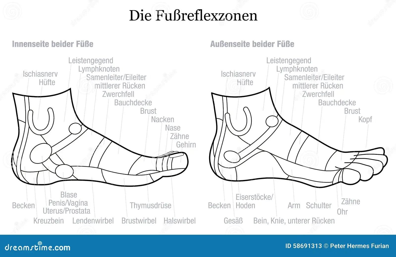 Fu Reflexzonenmassage Seiten Profil Ansicht Beschreibungs