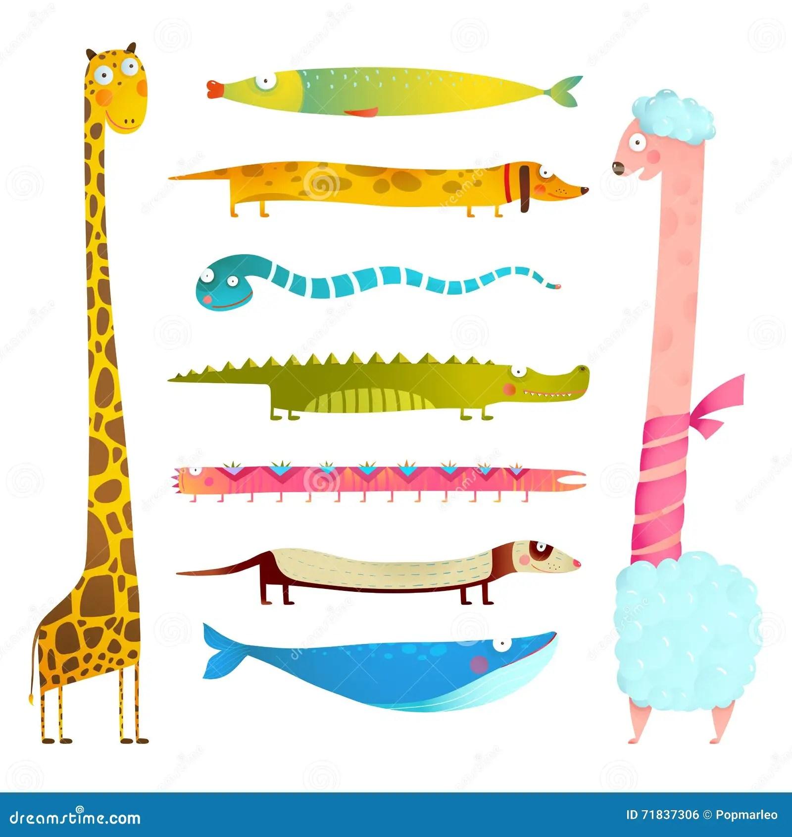 Fun Cartoon Long Animals Illustration Collection For Kids