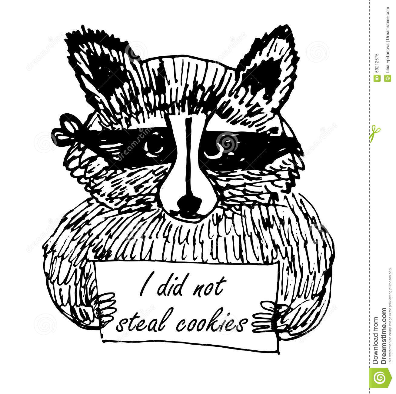Ink Drawing Of A Raccoon Stock Photo