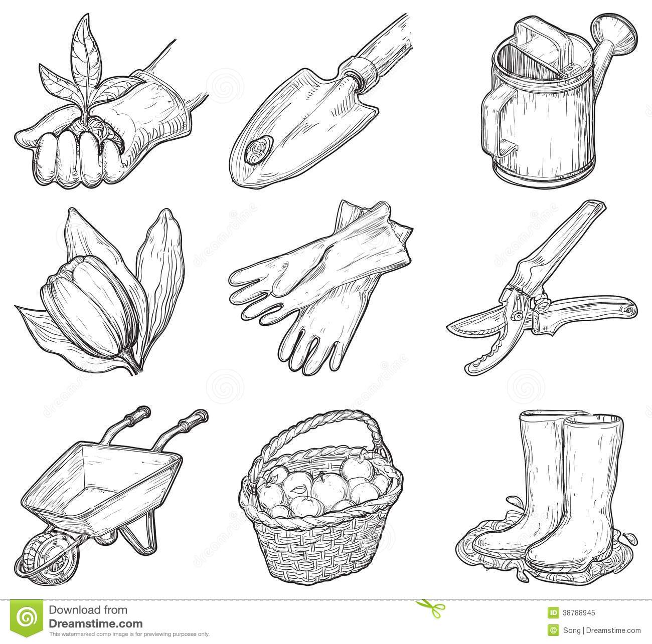 Garden Tools And Things Stock Vector Illustration Of