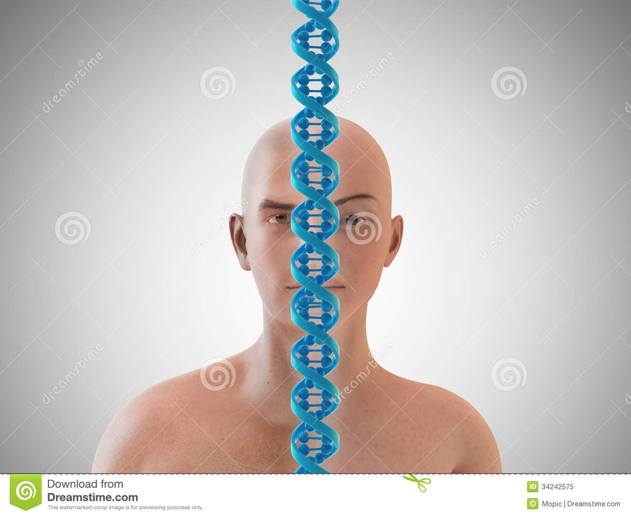 Genetics And Heredity Concept Royalty Free Stock Photo
