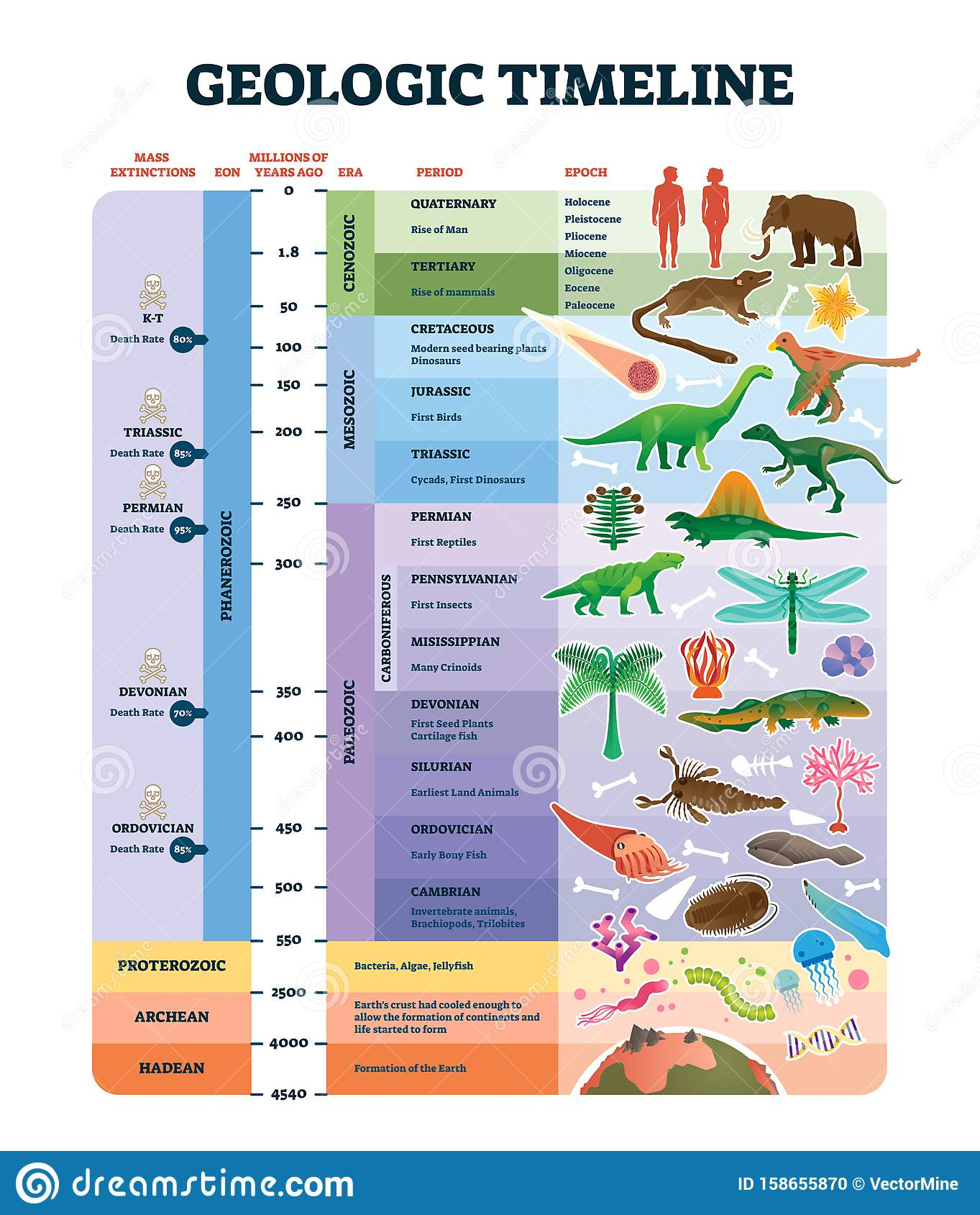 Geologic Timeline Scale Vector Illustration Labeled Earth