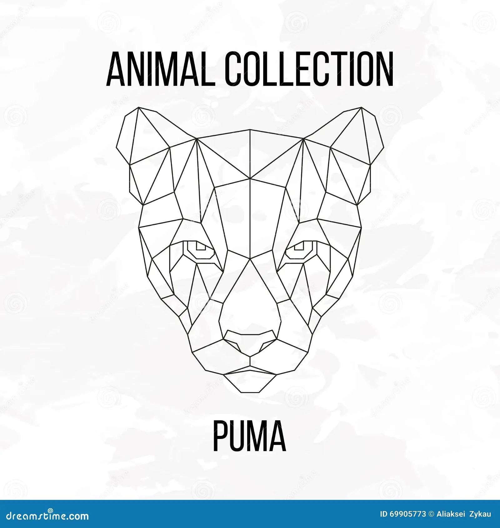 Geometric Puma Head Stock Vector Illustration Of Nature