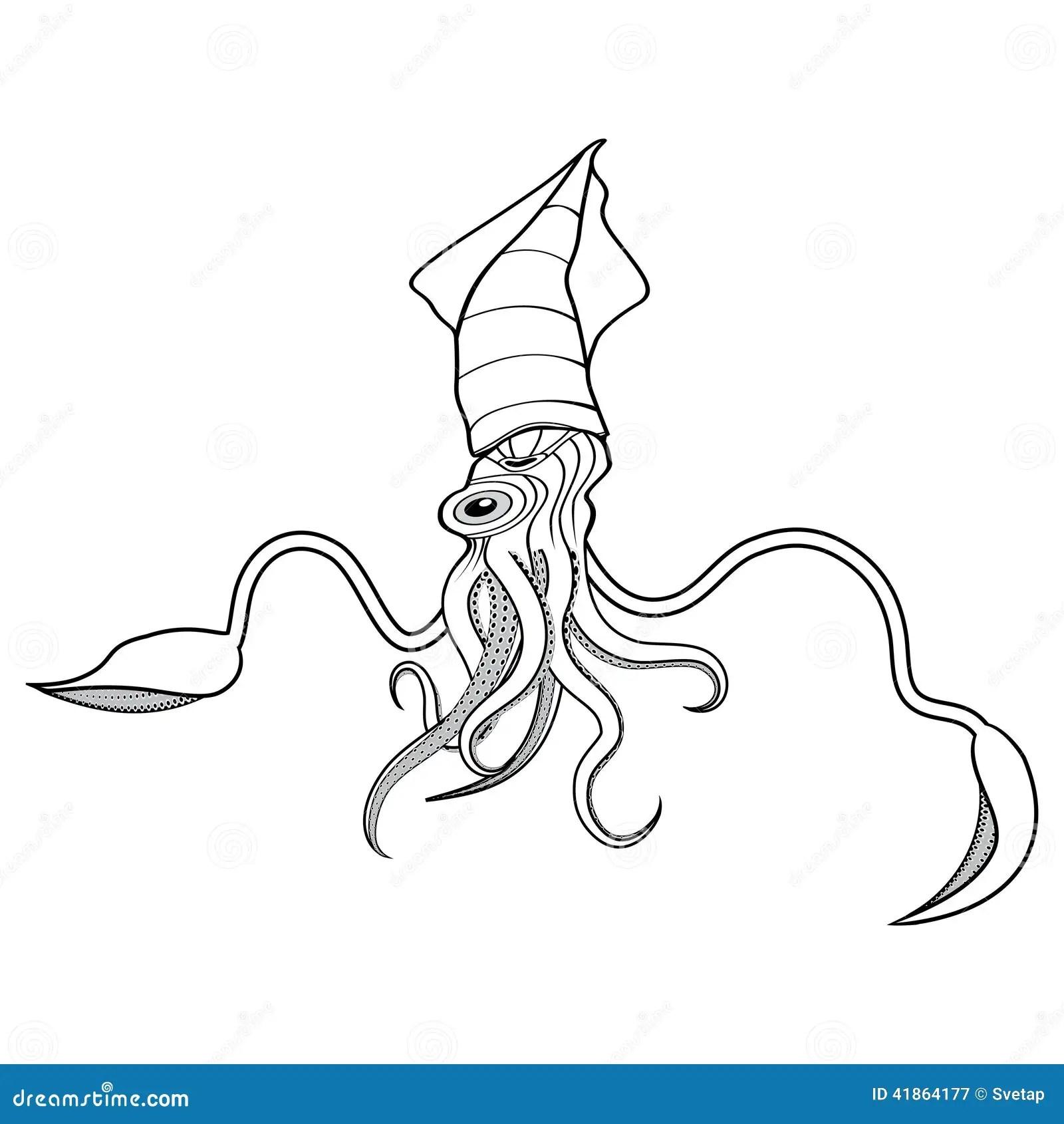 Giant Squid Illustration Stock Vector
