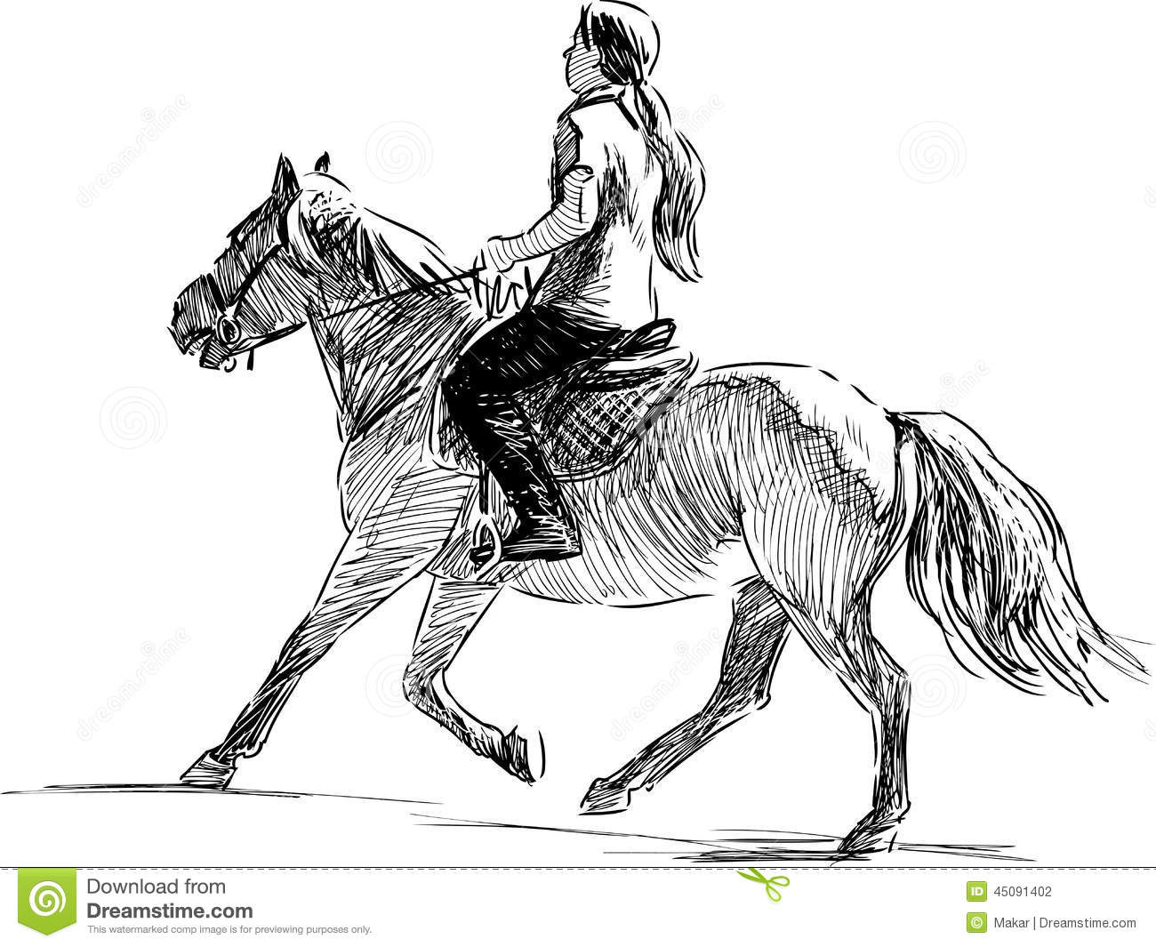 Girl Riding A Horse Stock Vector Illustration Of Sports