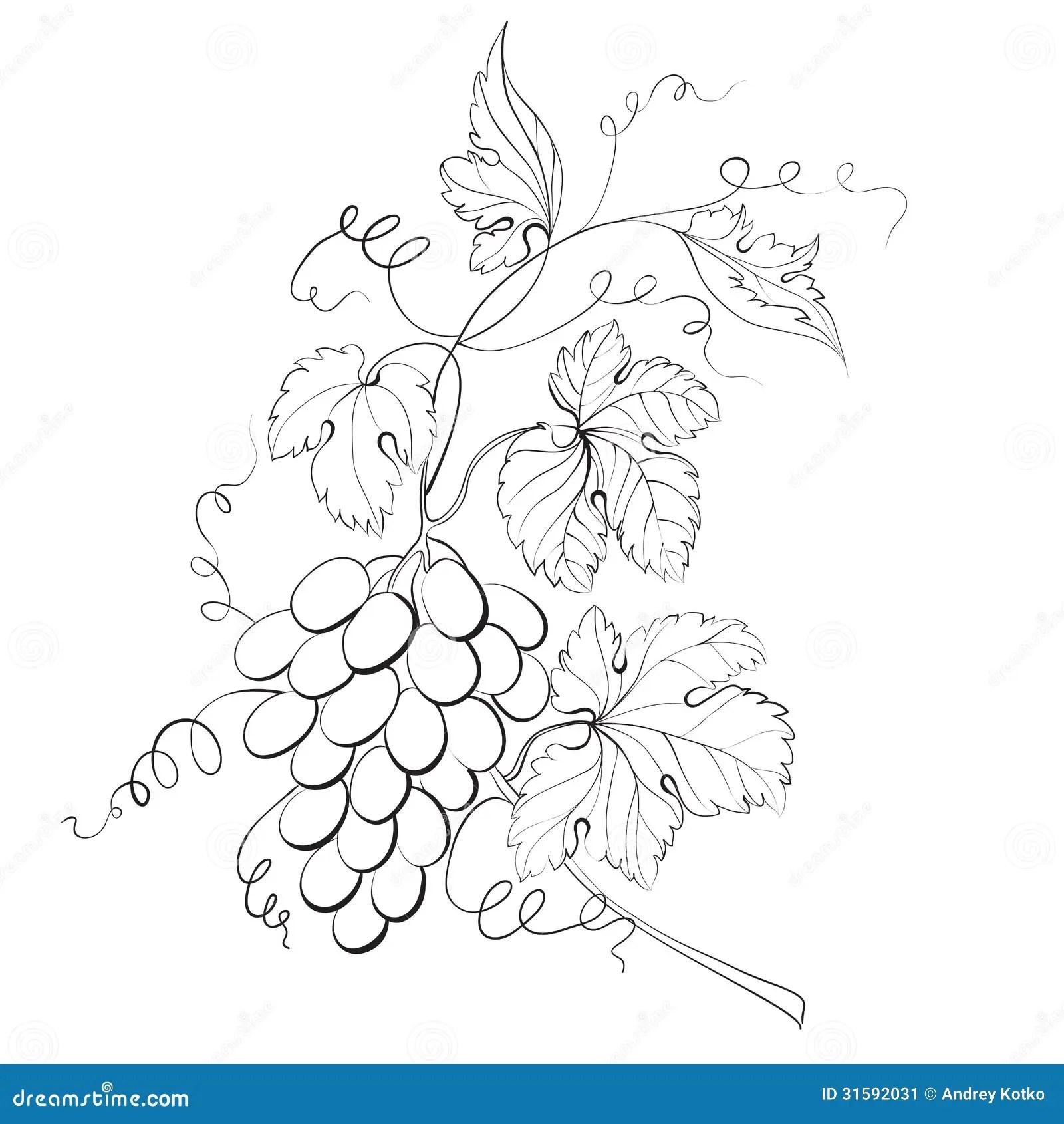 G S Engraving Stock Vector Illustration Of Leaf