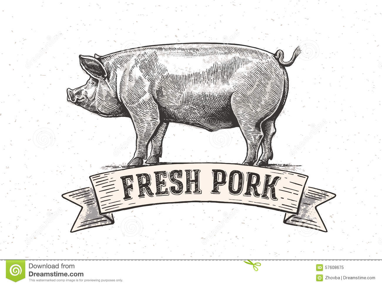 Pig Cartoons Illustrations Amp Vector Stock Images