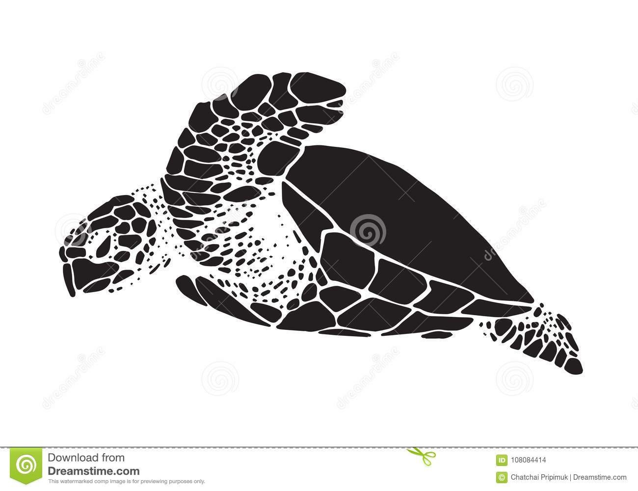 Graphic Sea Turtle Vector Stock Vector Illustration Of