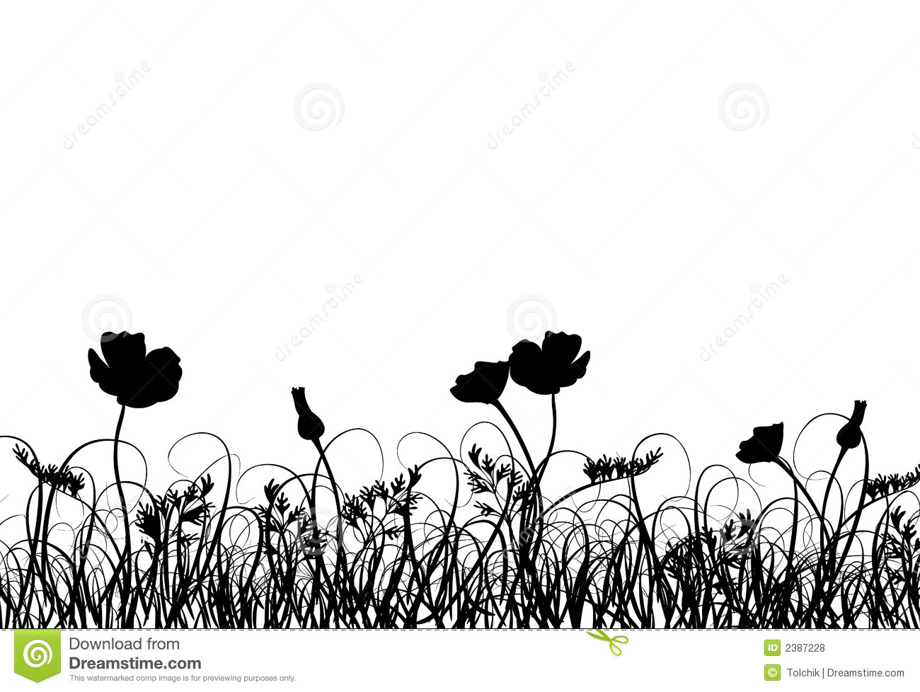 Grass And Poppy Vector Stock Vector Illustration Of