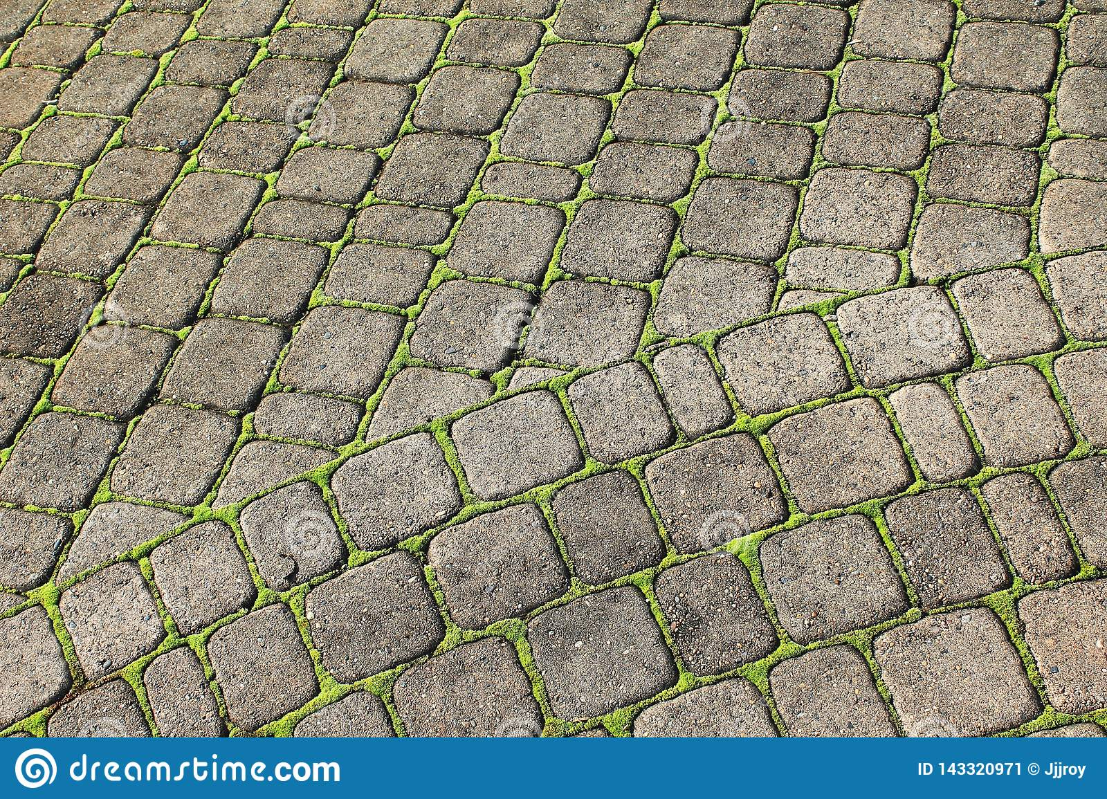 https www dreamstime com gray paving stones form intersecting grid mossy green mosaic outlines individual pavers cobblestone patio image143320971