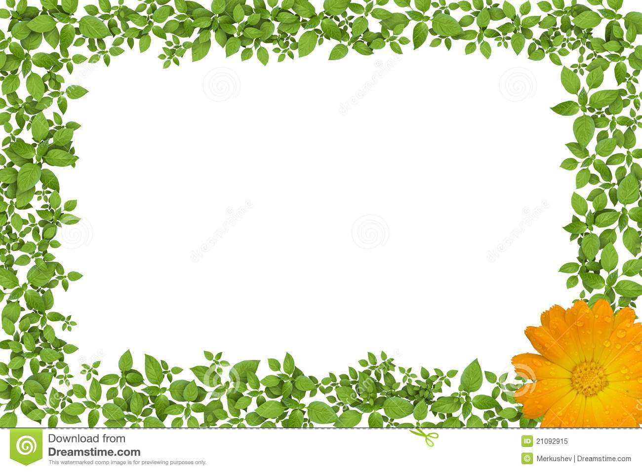 Green Plant Frame With Yellow Flowers Royalty Free Stock