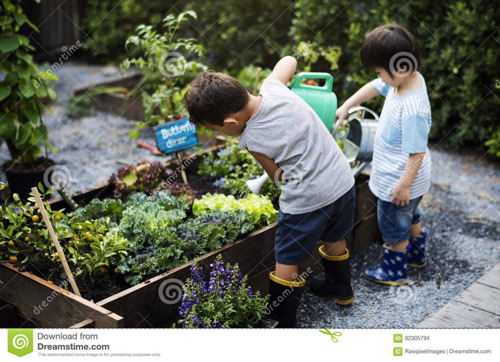 Group Of Kindergarten Kids Learning Gardening Outdoors Stock Photo