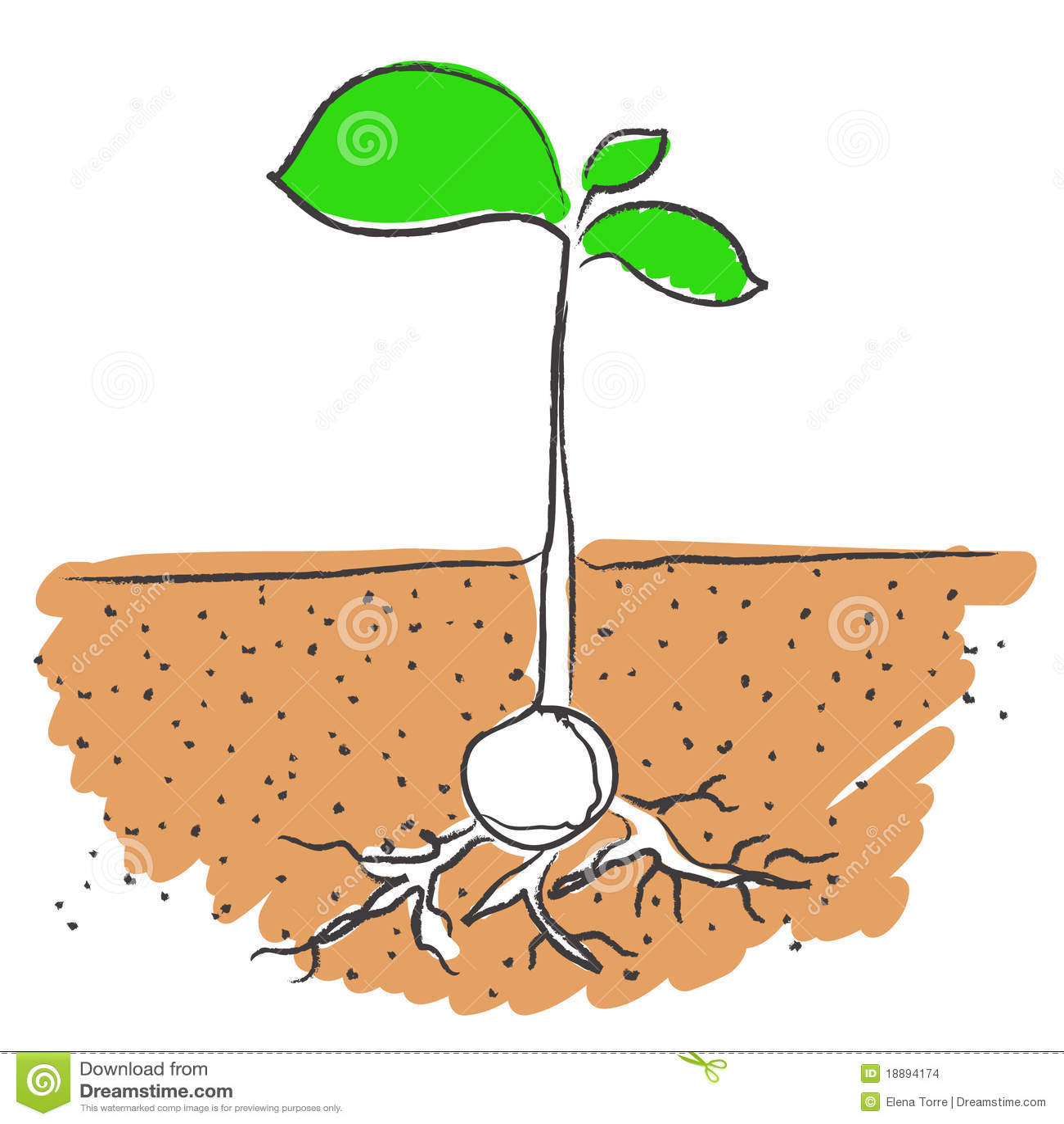 Free Art Clip Dirt Roots
