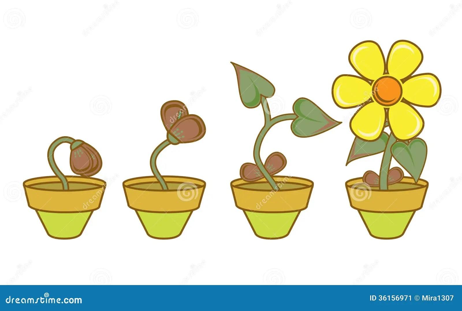 Growt U Entwicklung Stock Abbildung Illustration Von