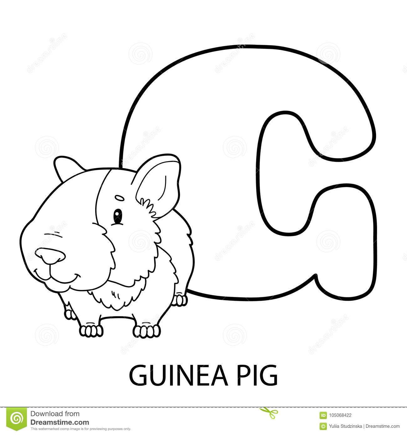 Guinea Pig Alphabet Coloring Page Stock Vector