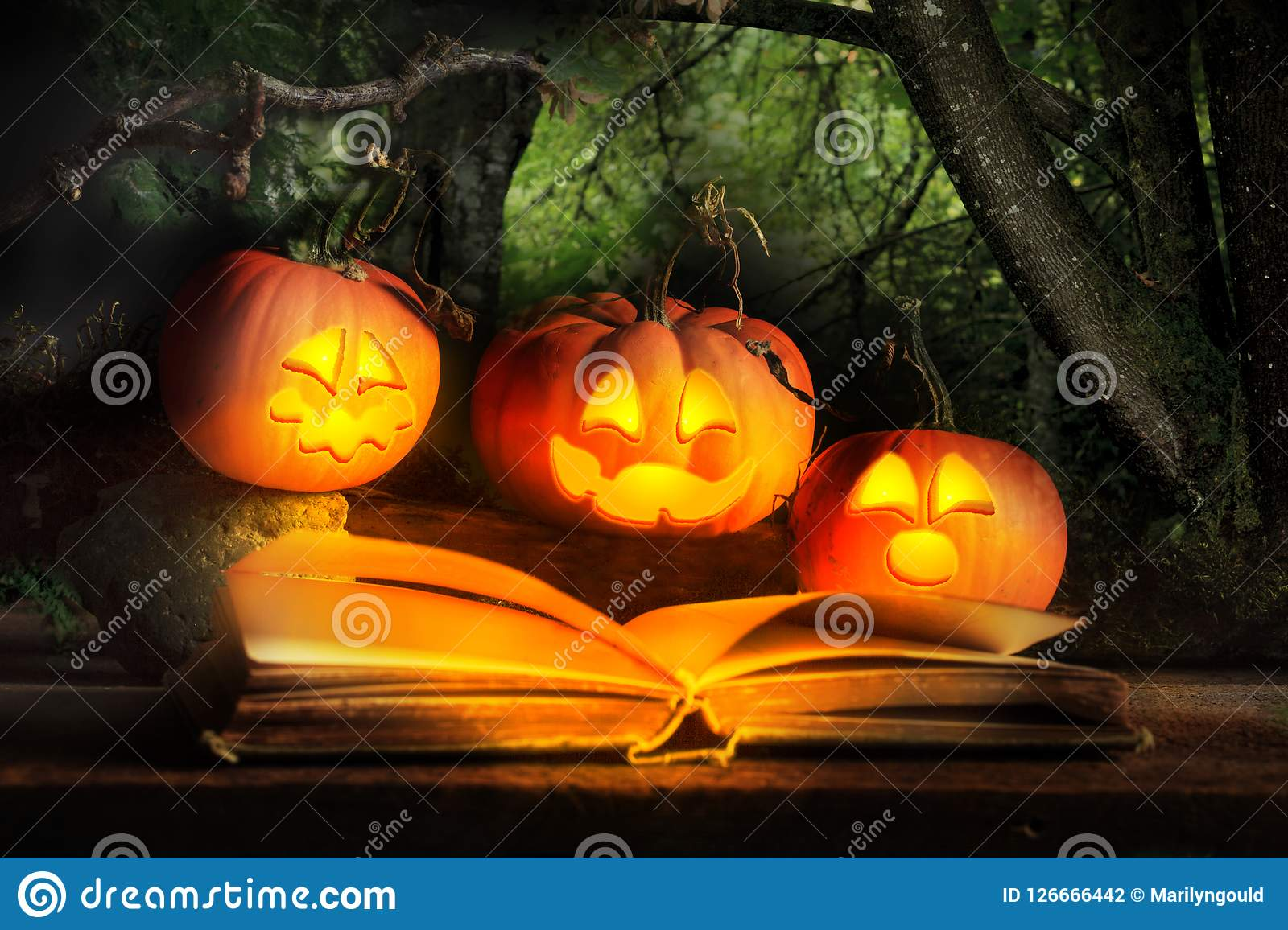 Halloween Jack O Lanterns Reading Scary Story Stock Photo