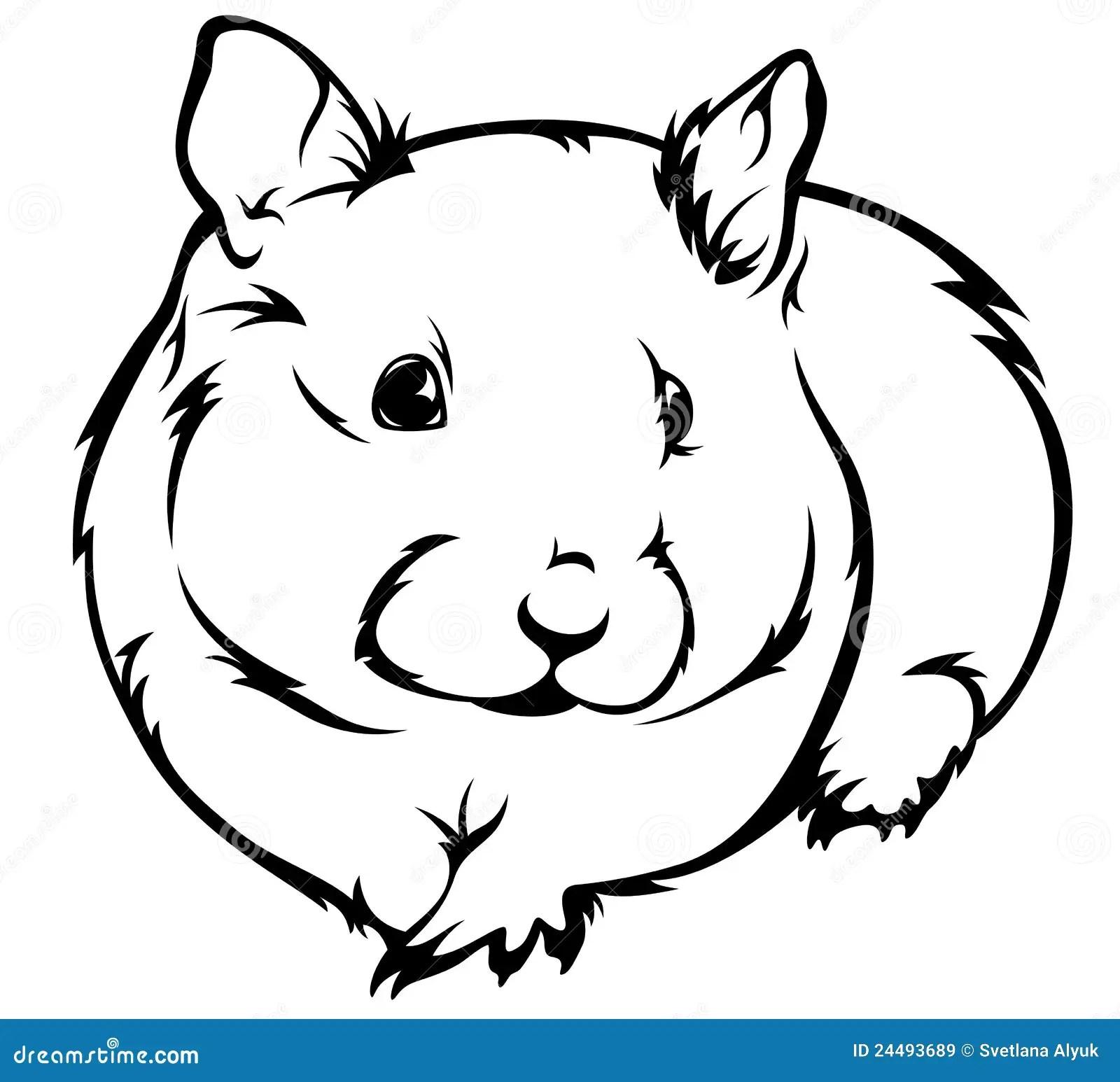 Hamster Vector Illustratie Illustratie Bestaande Uitr