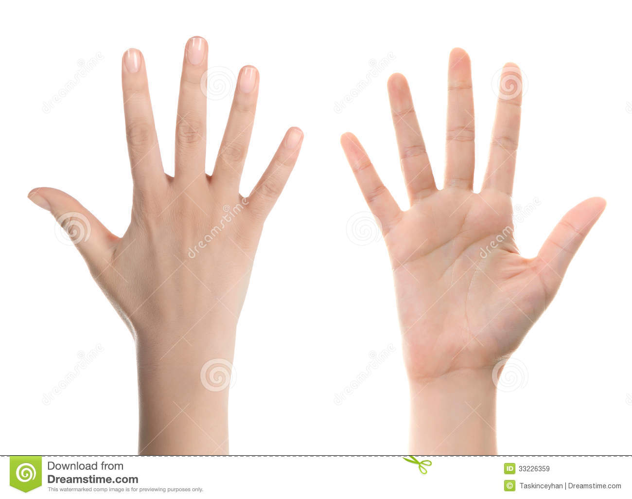 Hand Counting Five Stock Image Image Of Education Hand