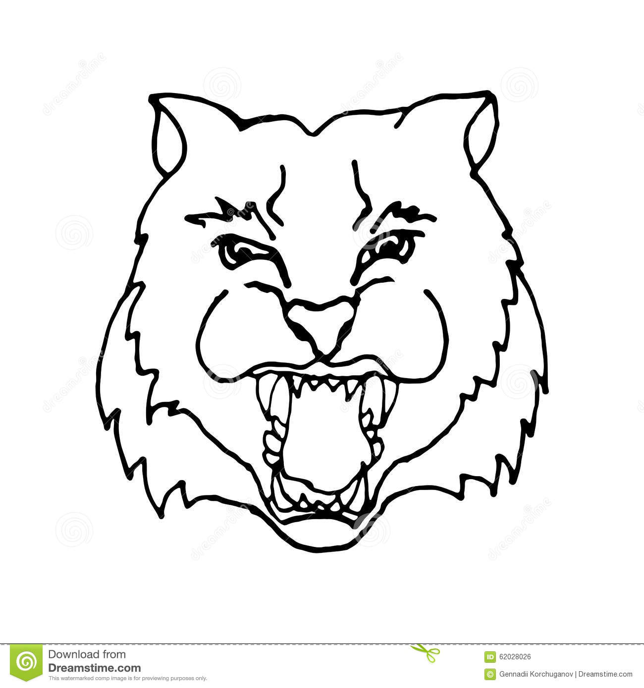 Hand Draw Head Screaming Tiger With Big Teeth In Stock