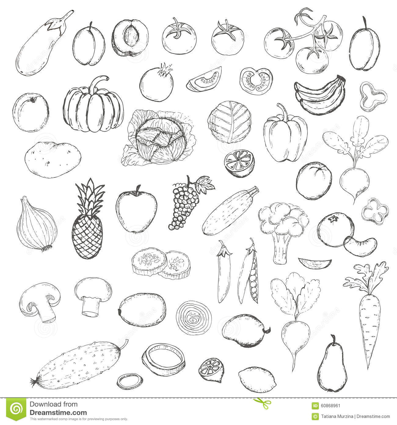 Hand Drawn Doodle Fruits And Vegetables With Name Stock