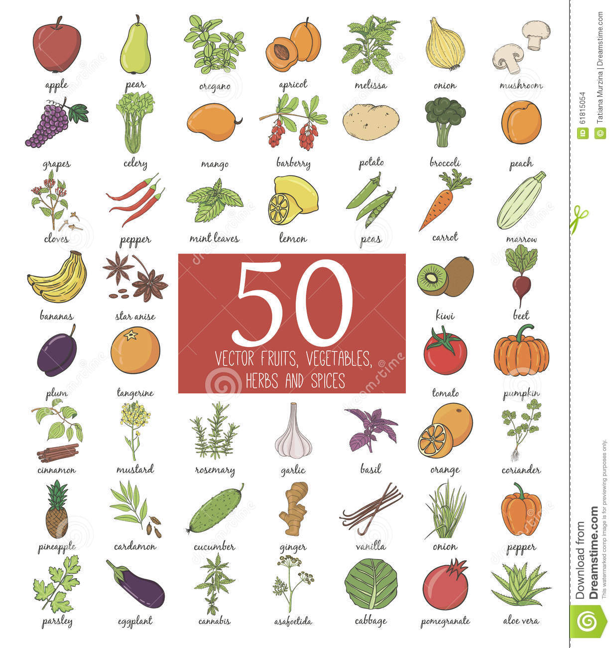 Hand Drawn Doodle Fruits And Vegetables Stock Illustration