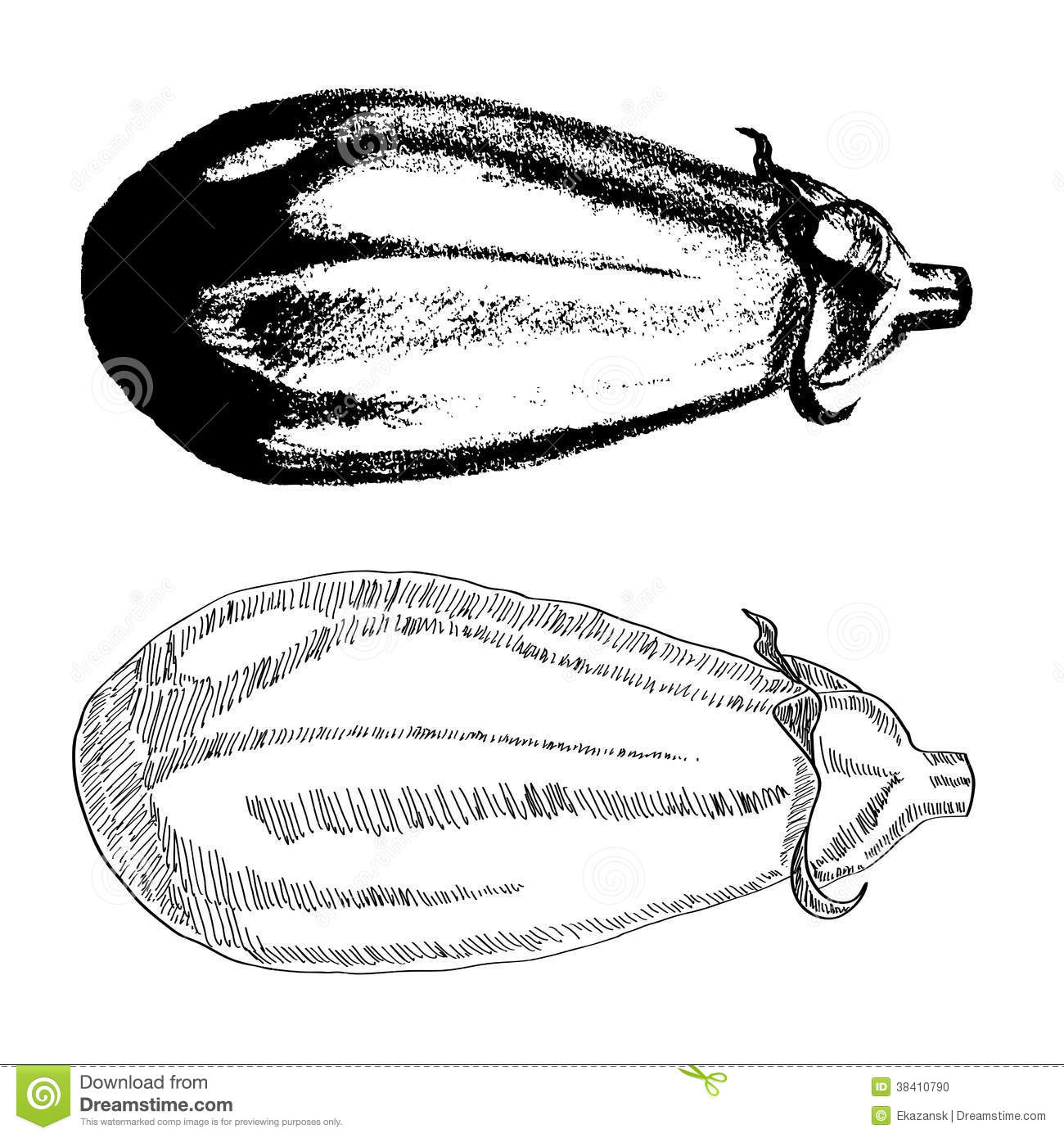 Hand Drawn Eggplant Stock Photo