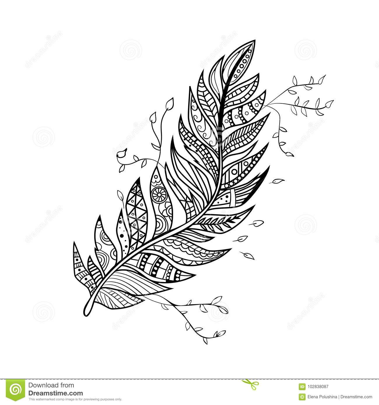 Hand Drawn Peacock Feather Vector Vintage Ethnic Feather