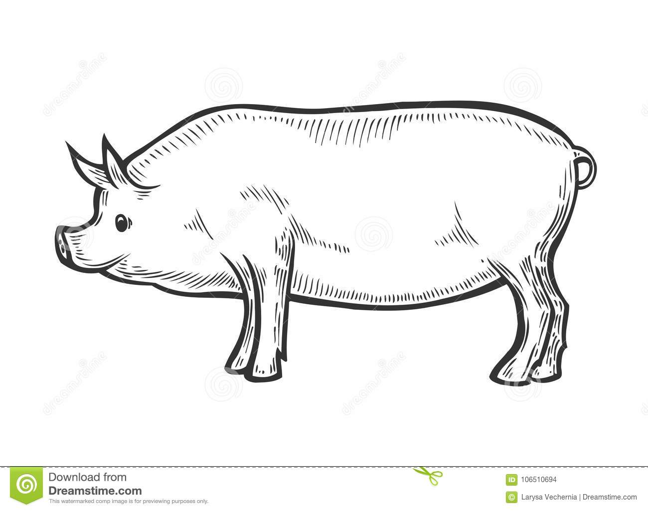Sow With Piglet Royalty Free Stock Image