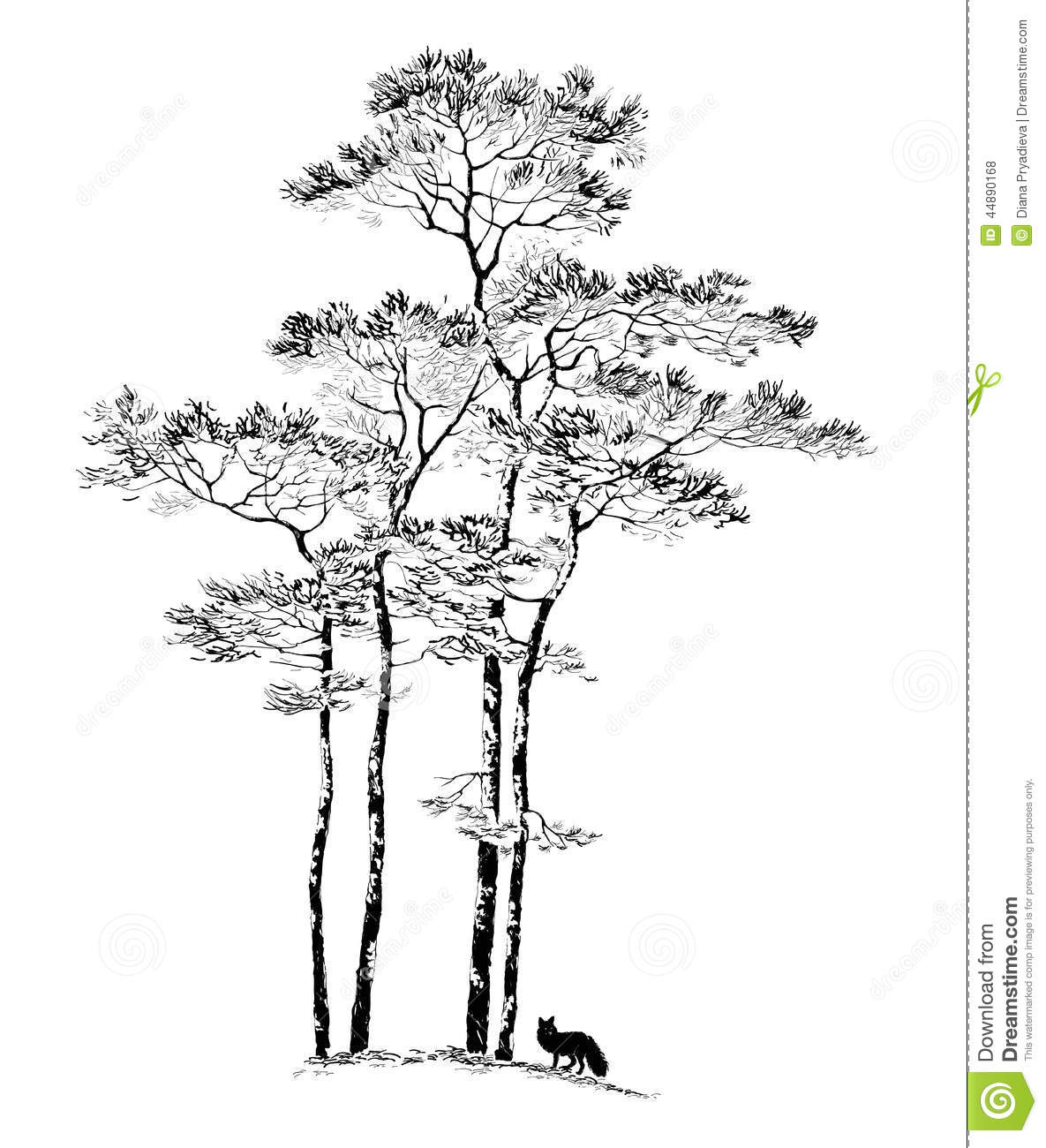 Hand Drawn Pine Tree Sketch Stock Vector