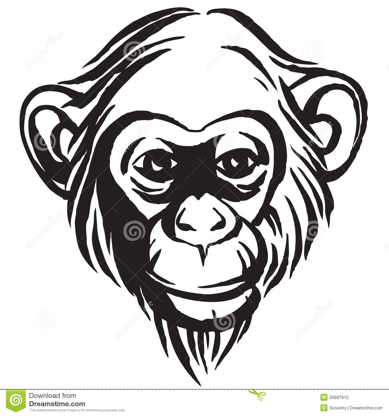 Hand Drawn Portrait Of Monkey Chimpanzee Black And White