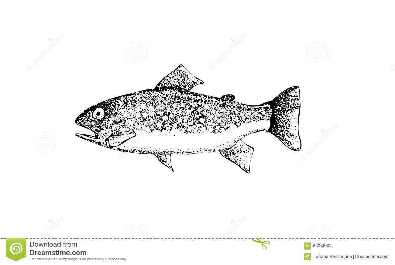 With Hand Drawn Realistic Fishctor Stock Vector