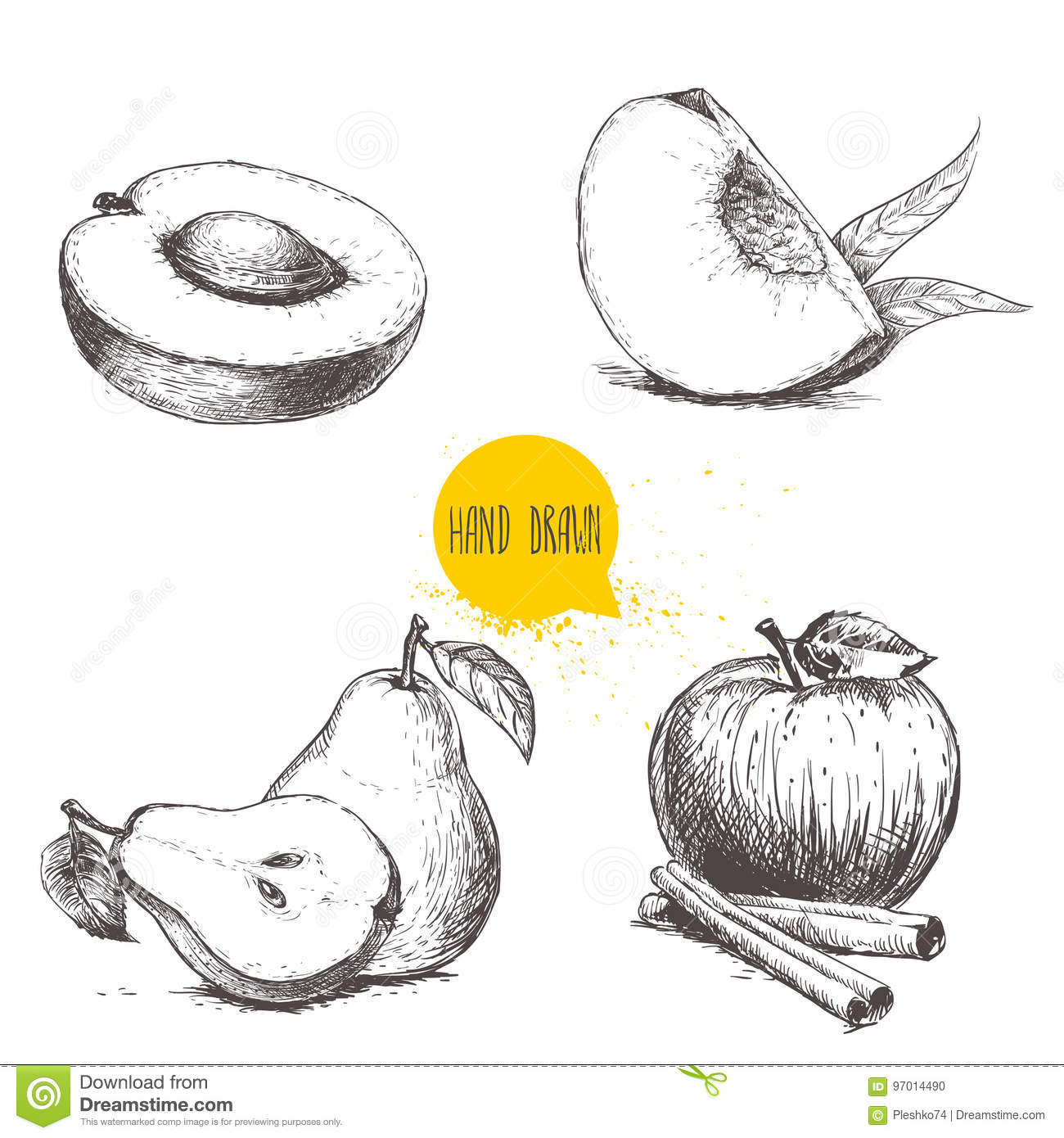 Hand Drawn Sketch Style Fruits Set Stock Vector