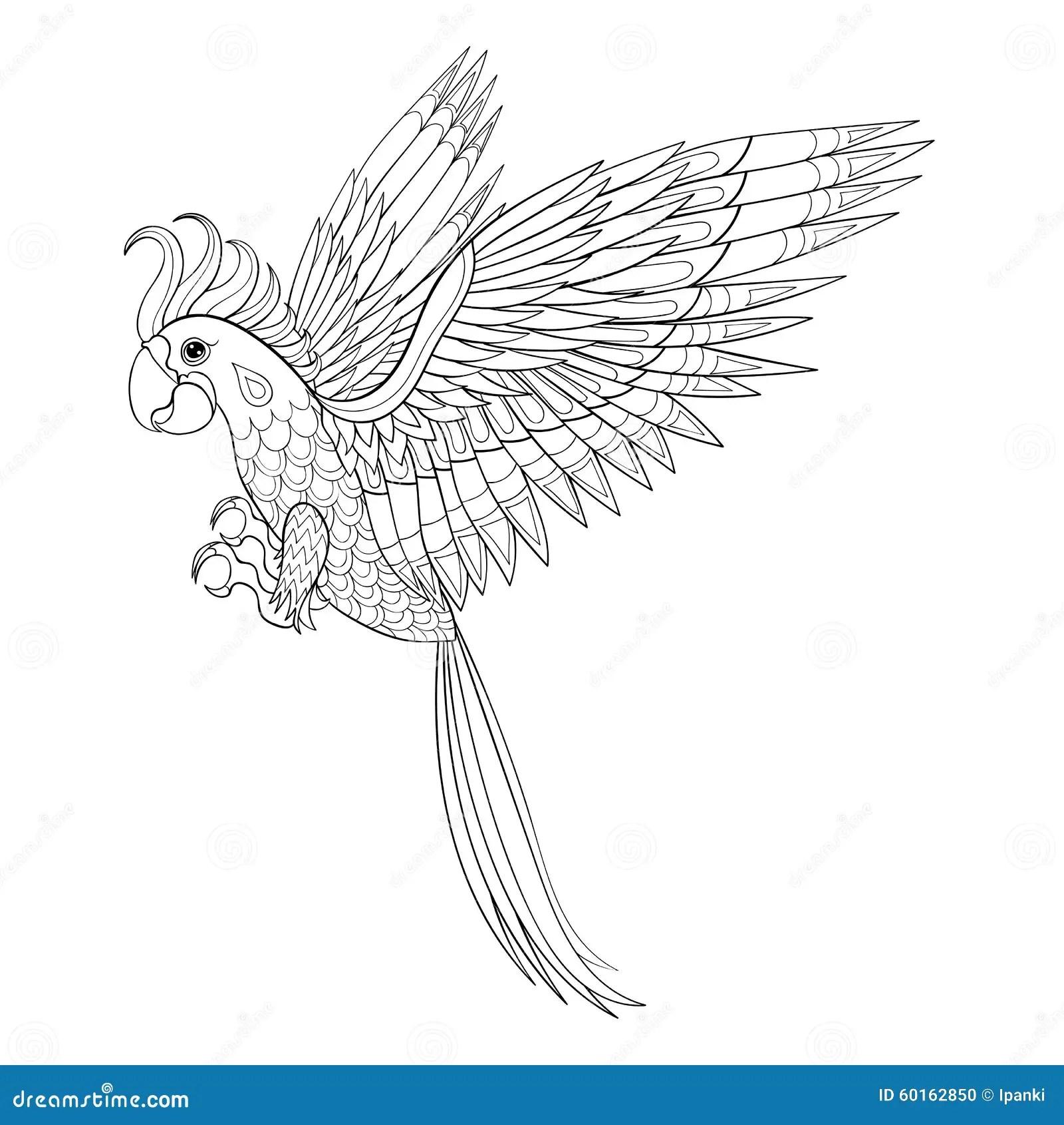 Zentangle Macaw Ara And Cockatoo Cartoon Vector