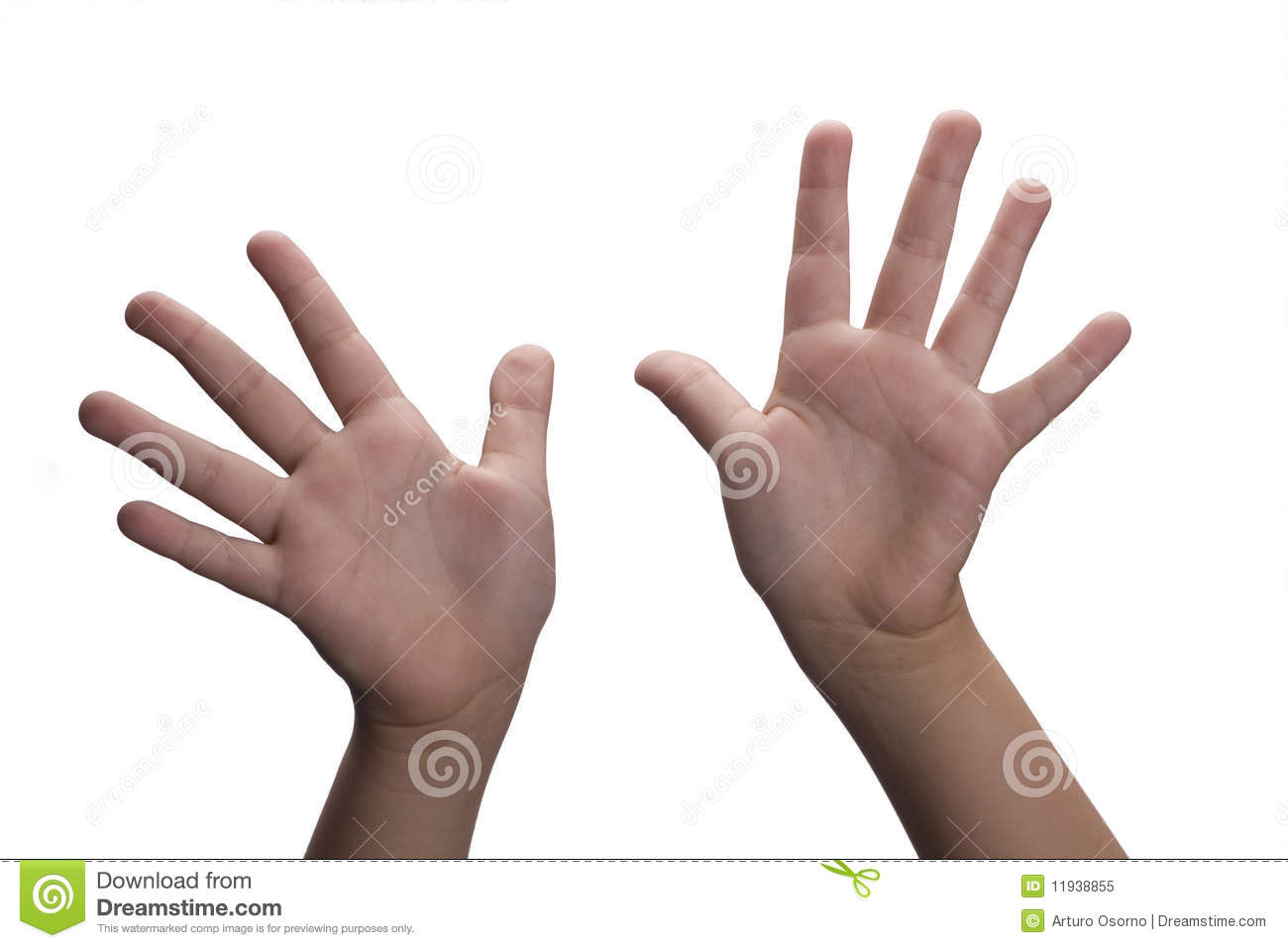 Hands Open Royalty Free Stock Photo Image 11938855