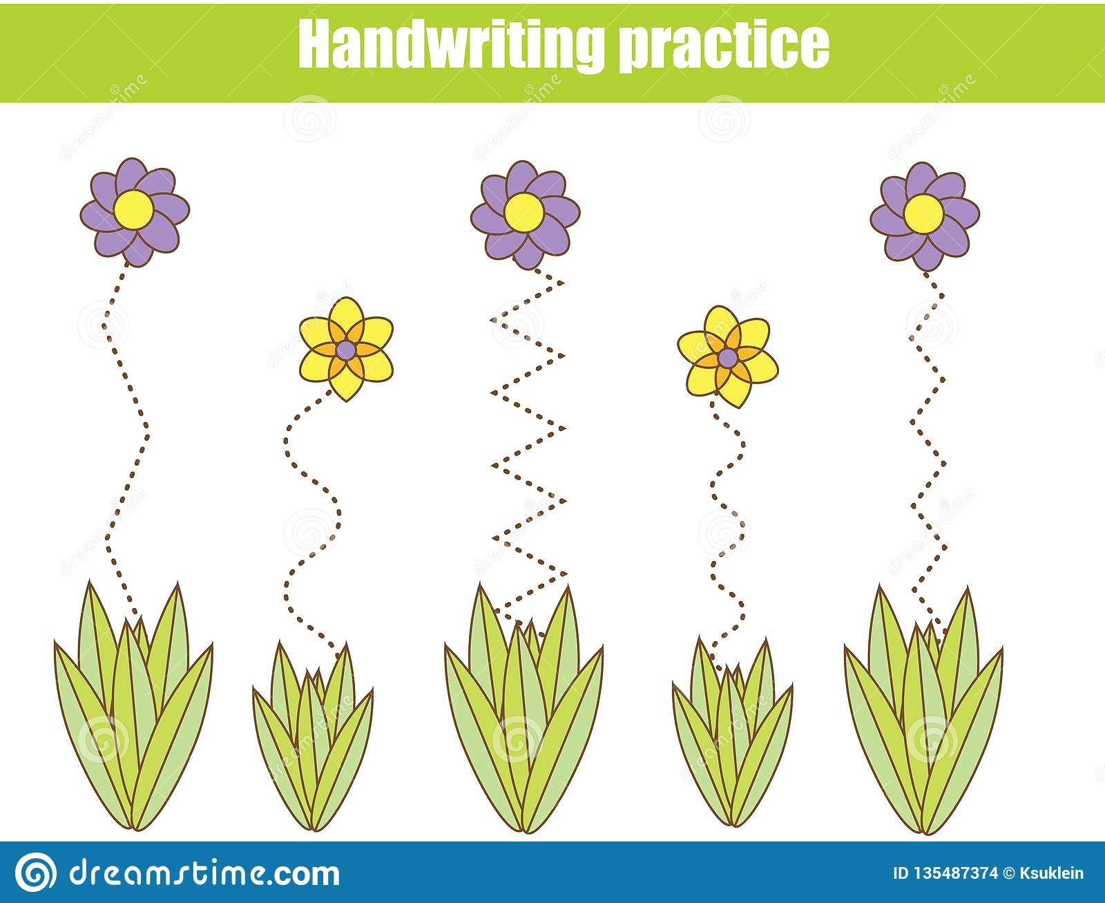 Flower Basics Worksheet Answers