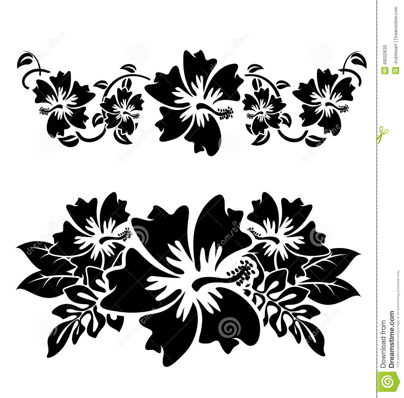 Hawaiian Hibiscus Flowers Stock Vector Illustration Of