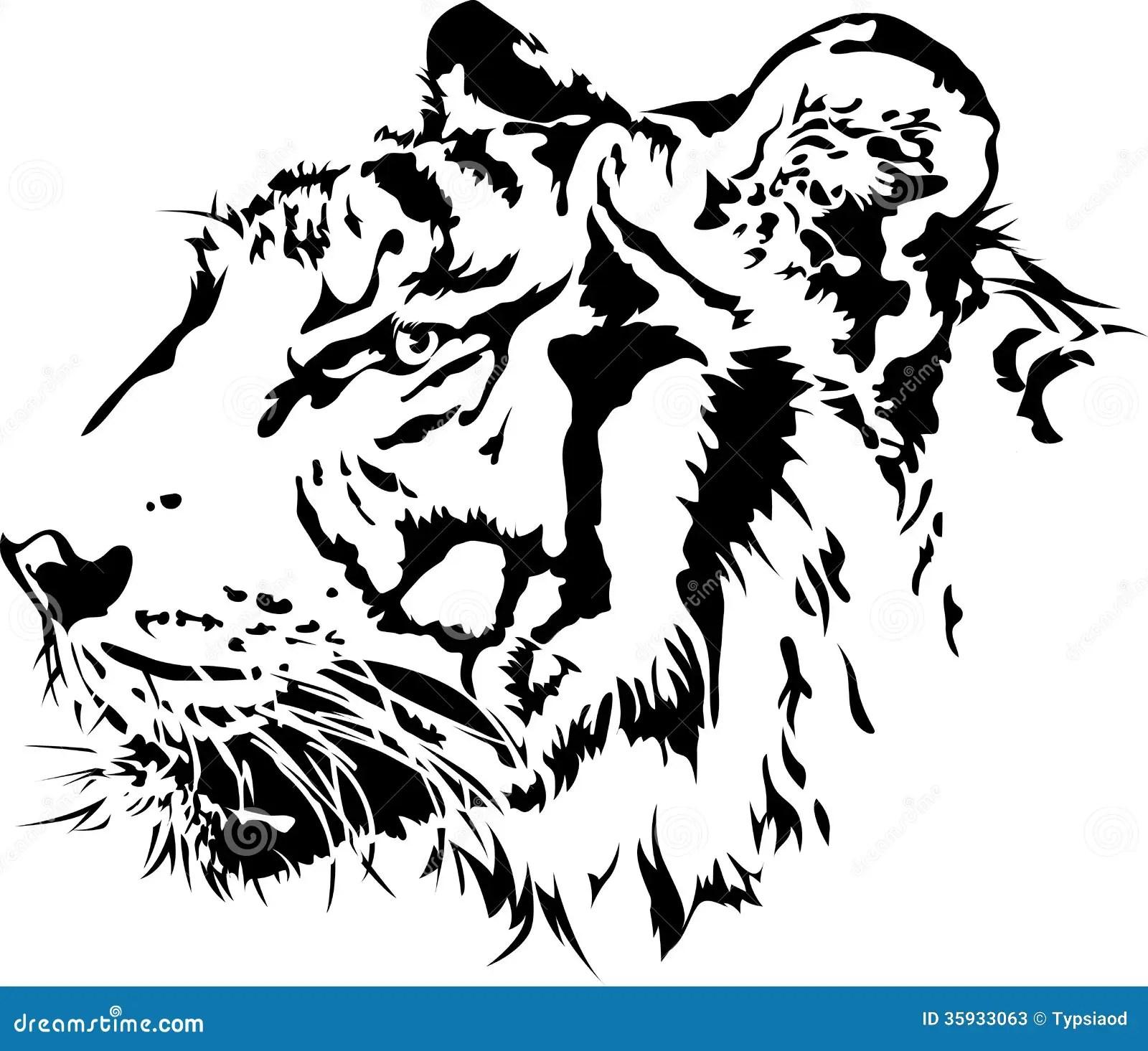 Head Kontur For Tiger Vektor Illustrationer Illustration