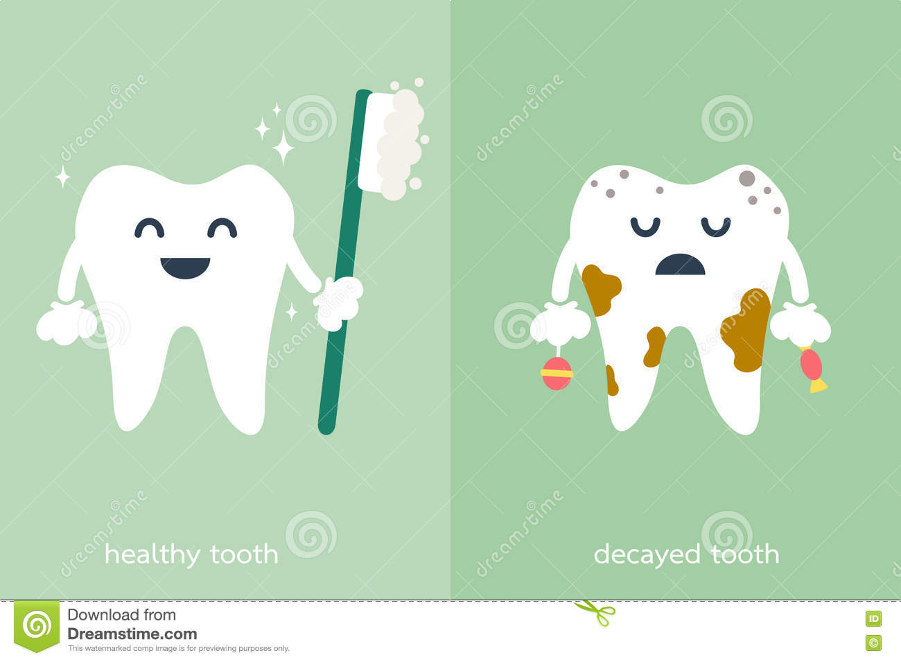 Healthy And Decayed Tooth Stock Vector Illustration Of