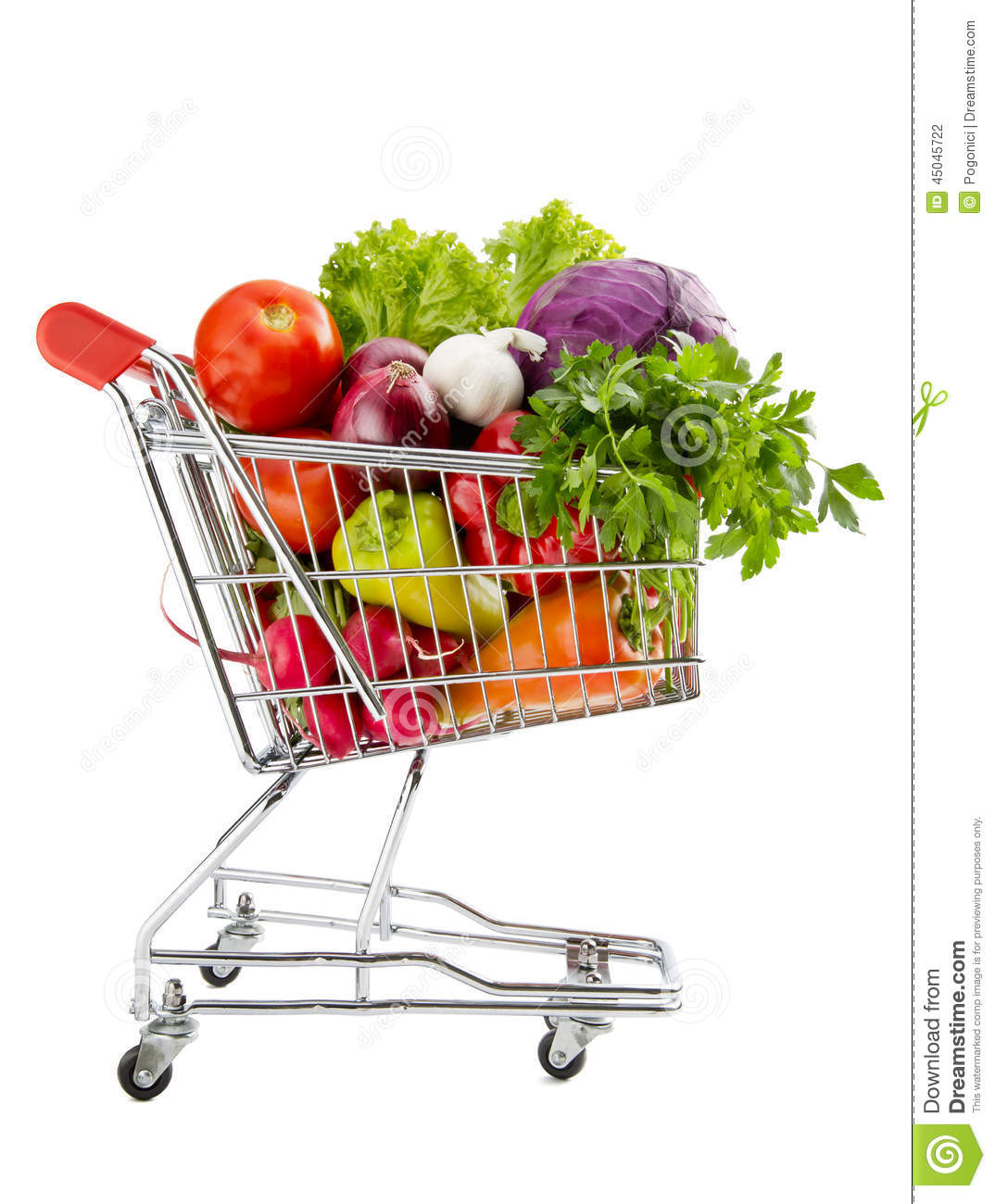 Healthy Food Shopping Stock Photo Image Of Full Cabbage