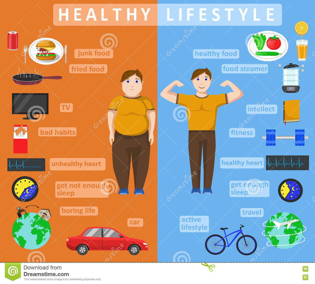 Healthy Lifestyle Infographics Stock Vector