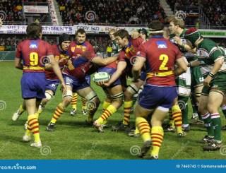 Heineken Cup Rugby