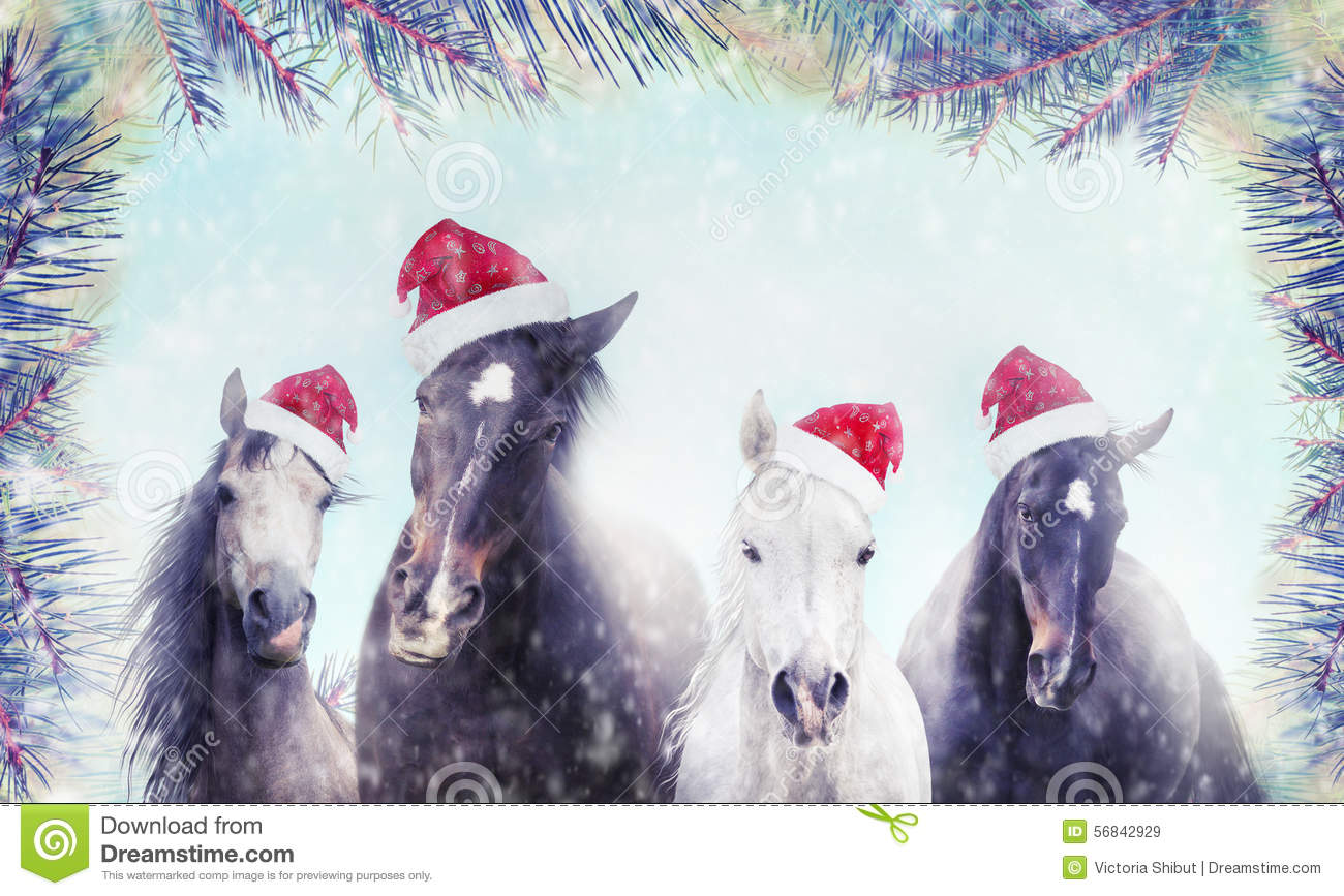 Herd Of Horses With Santa Hat On Winter Snow And Christmas